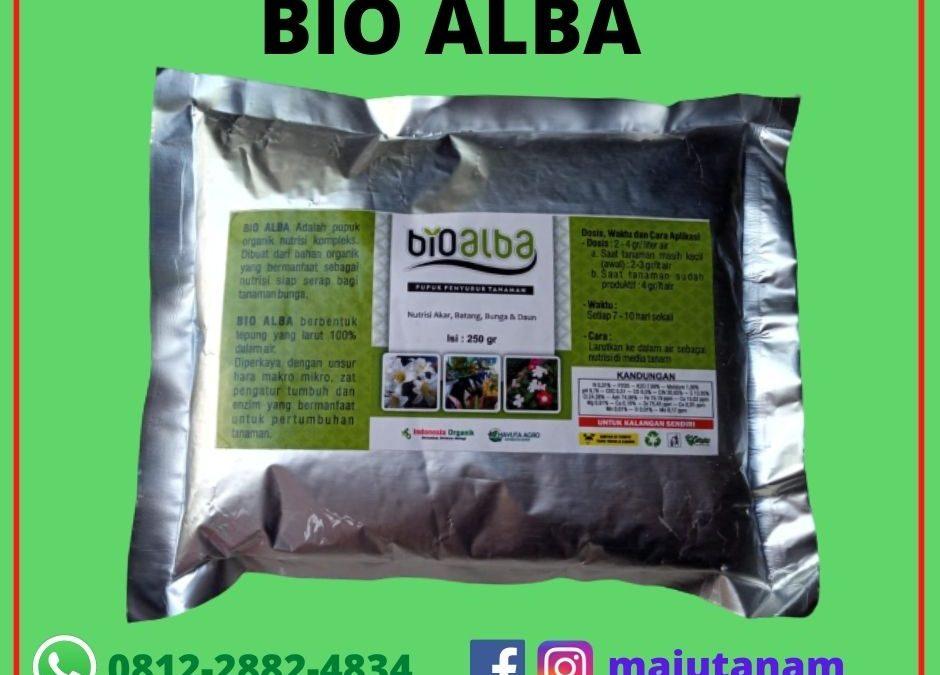 Bio Alba Arsip Kebun Sayuran Paket Benih Sayur Paket Urban Farming